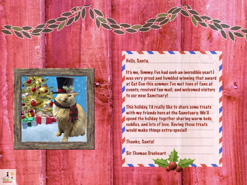 Tommy letter to santa virtual gift spiritdancerdesigns Images